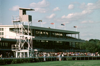 flemingtonracetrack03_ql